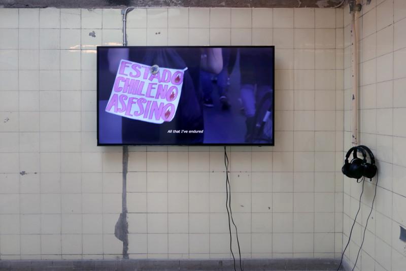 Eine Videoarbeit von Barbara Marcel, Humo sobre Humedales